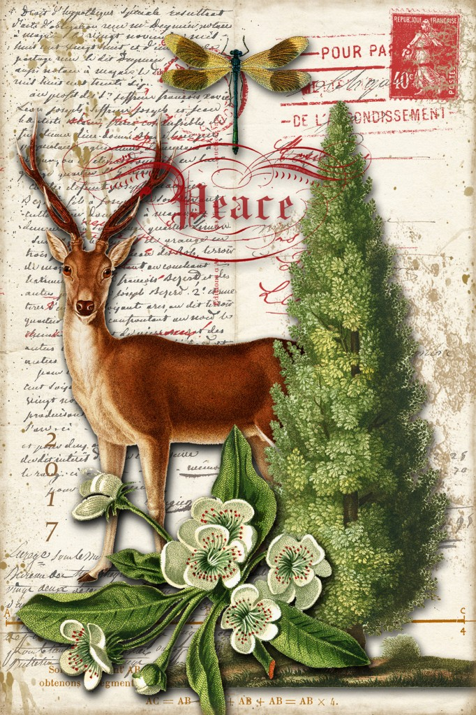 paris-deer-postcard